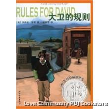 启发精选纽伯瑞大奖少年小说:大卫的规则