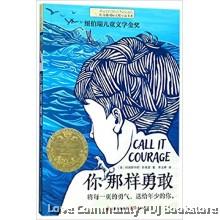 长青藤国际大奖小说书系:你那样勇敢