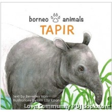 Borneo Animals - Tapir