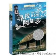 长青藤国际大奖小说书系:寻找阿加莎