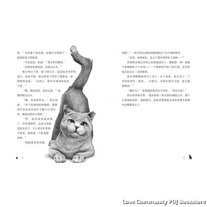 柴郡猫传奇