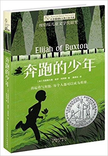 长青藤国际大奖小说书系: 奔跑的少年