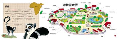 抢救动物园——寻找狐猴