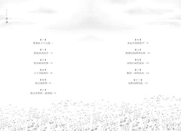 长青藤国际大奖小说系:最后的夏天