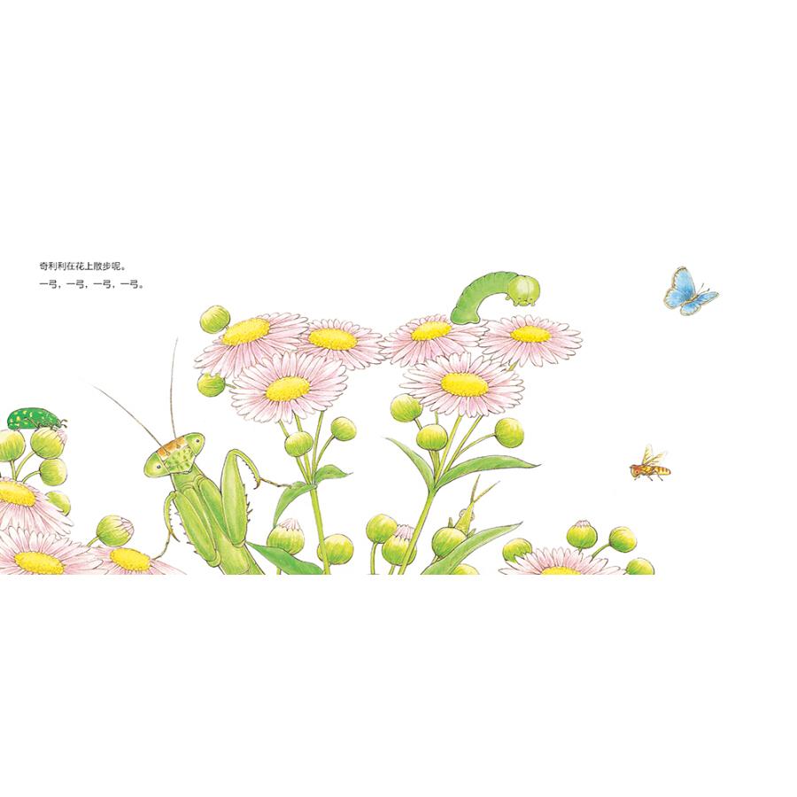 妈妈都喜欢的昆虫绘本(套装共4册)