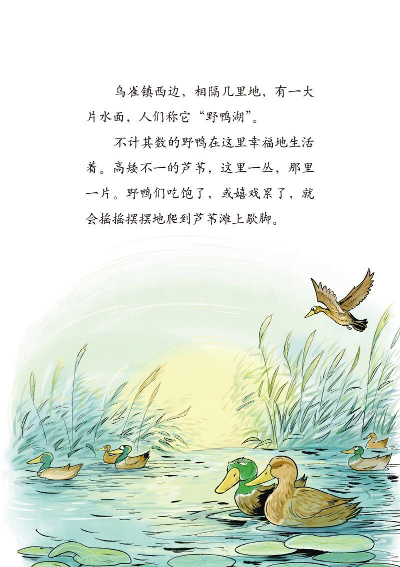 萌萌鸟系列 - 野鸭湖