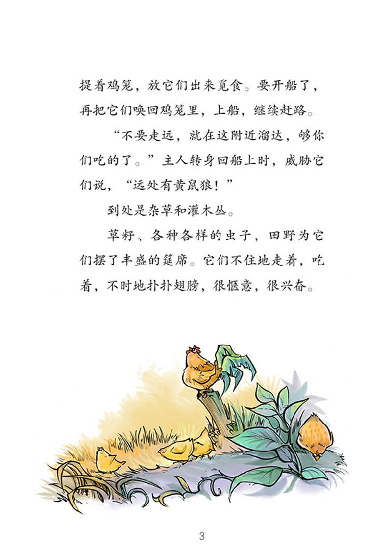 萌萌鸟系列- 矮脚鸡
