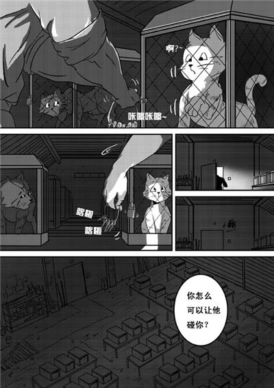 猫武士:重现家园