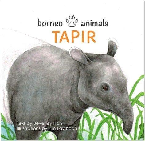 Borneo Animals - Tapir