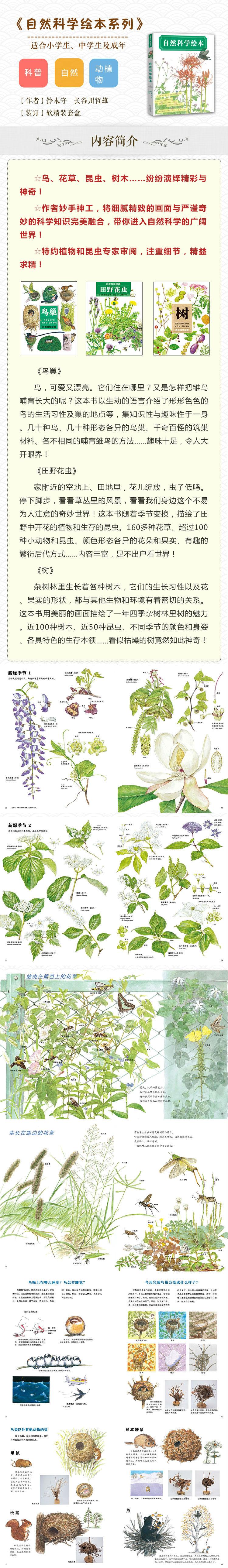 自然科学绘本系列 (套装共3册)