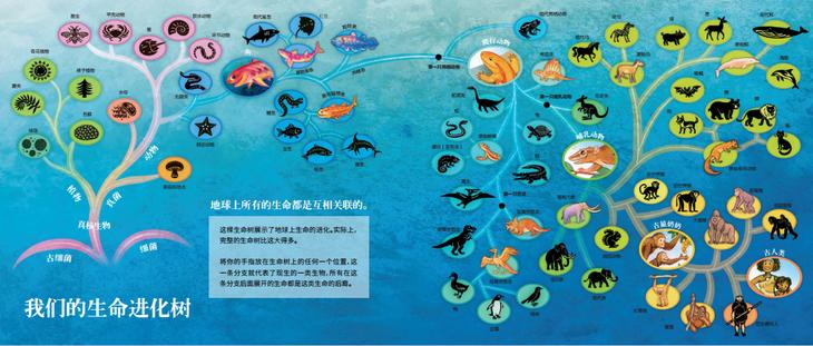 祖先-生命进化的故事